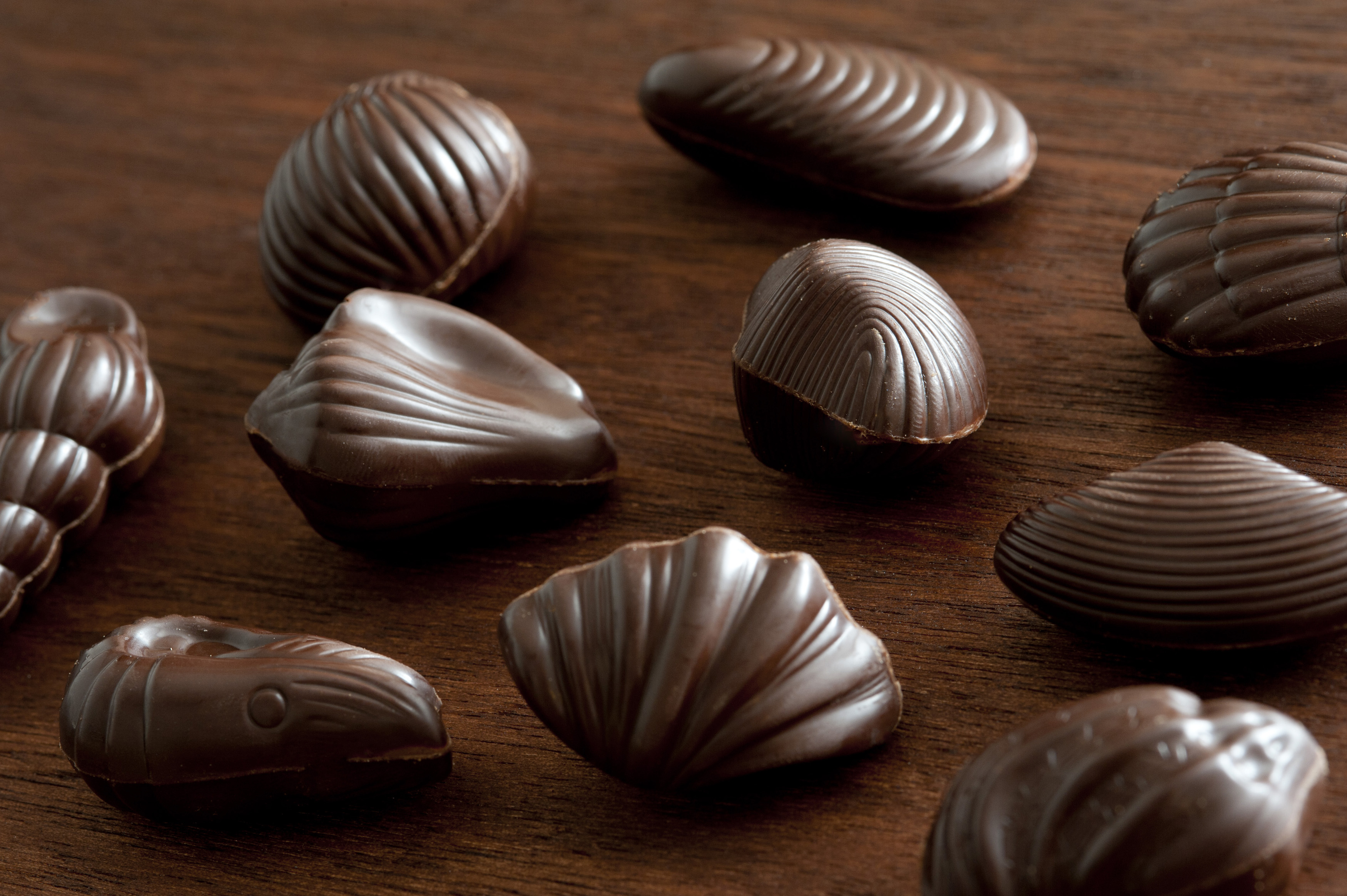Assortment of shell shaped dark chocolates resembling a variety of seashells on a wooden table, viewed close up high angle
