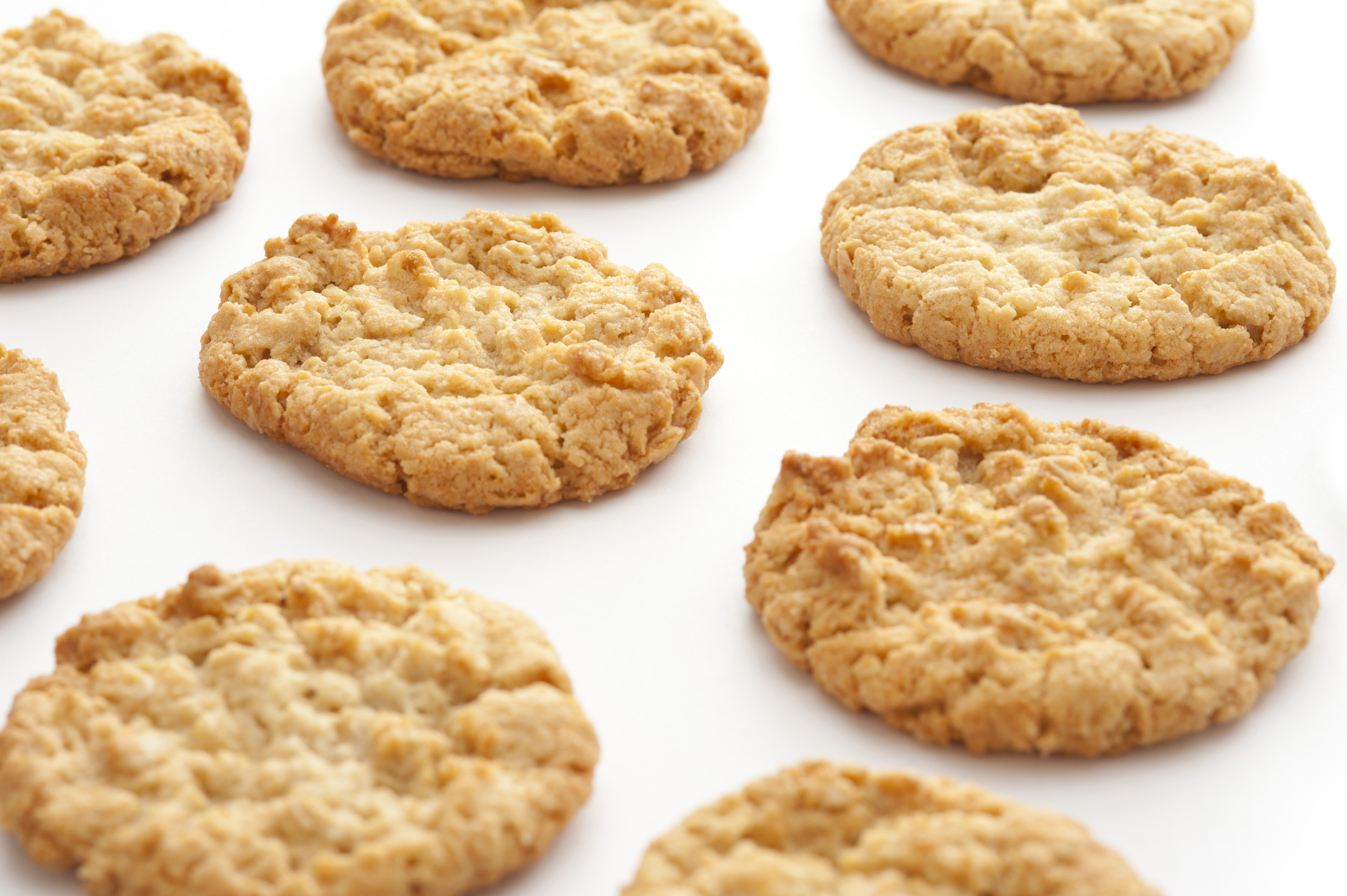 Top down view on cropped white surface with evenly spaced freshly baked round crunchy oat biscuit cookies