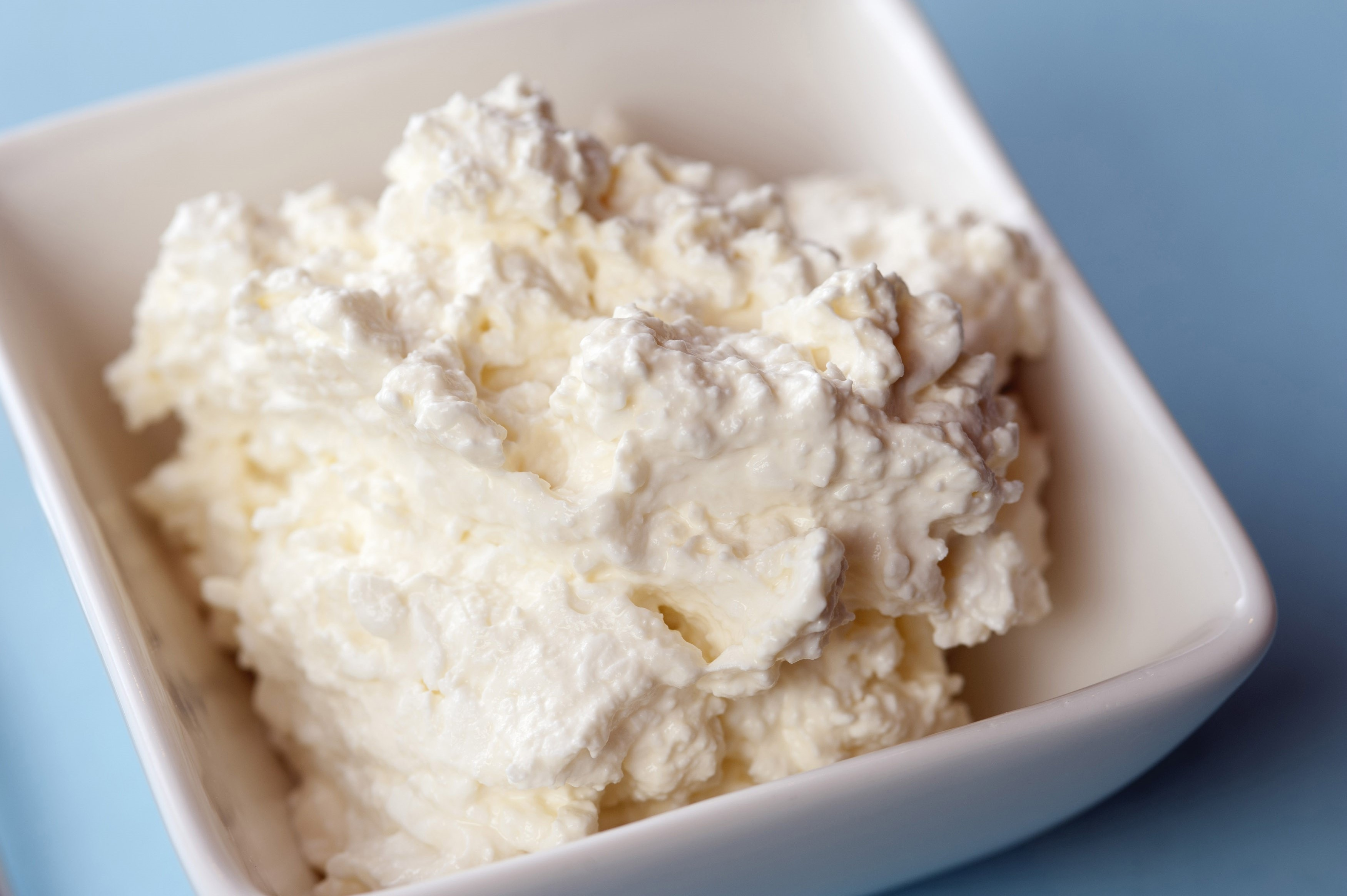 Dish of fresh cottage cheese free stock image i agree to the terms of the image use license download image sisterspd