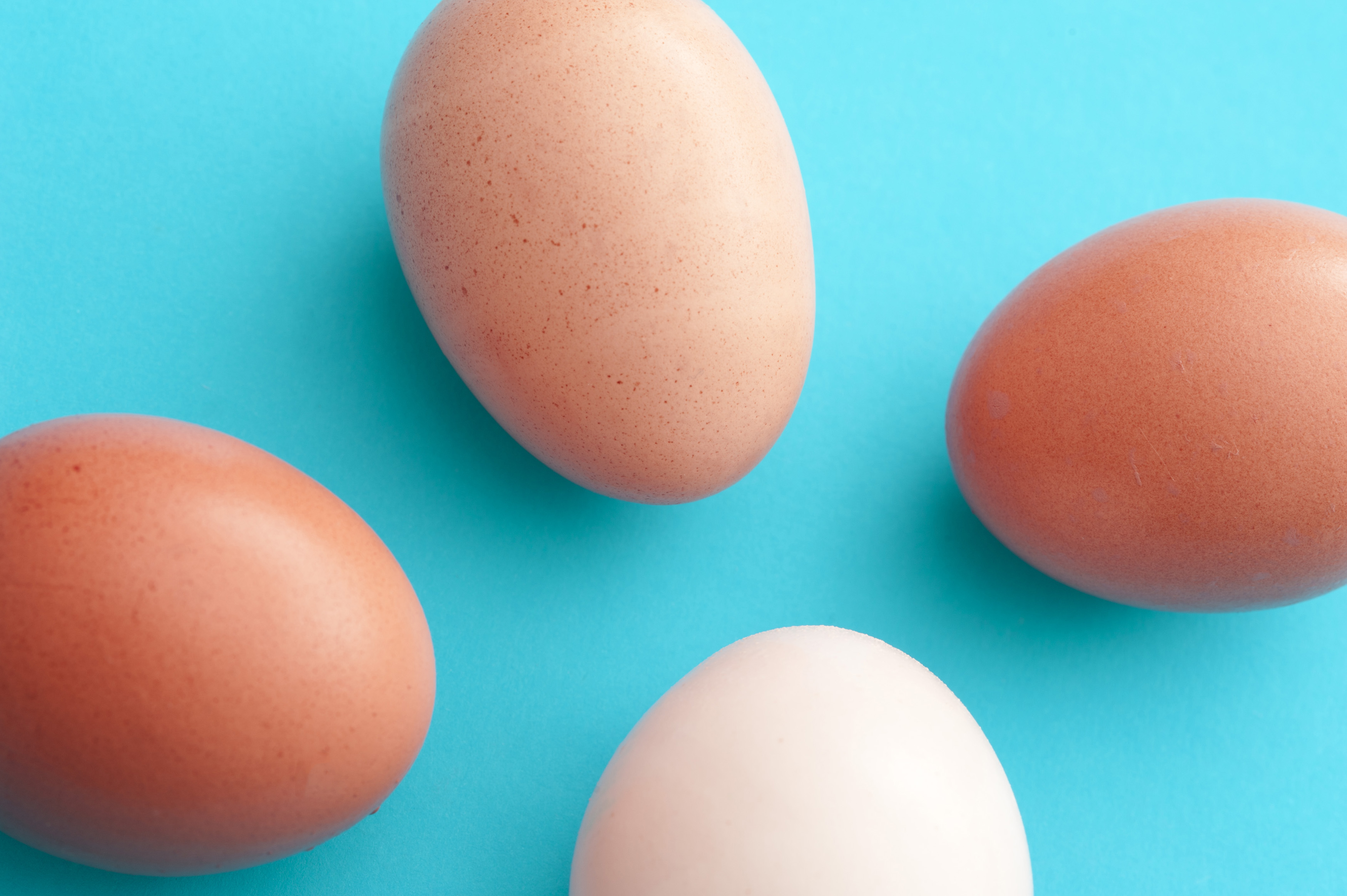 Four fresh raw whole eggs pointing towards the center on a blue background in different shades of brown through white