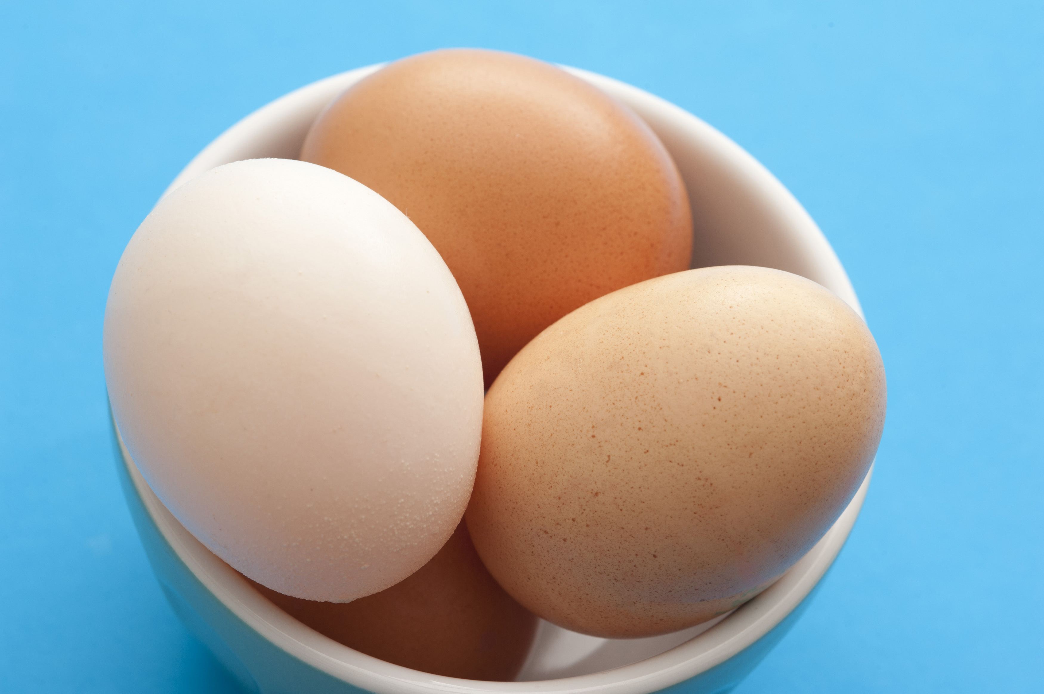 Farm fresh eggs in a little white ceramic bowl ready to be used for a healthy breakfast or baking , high angle over blue