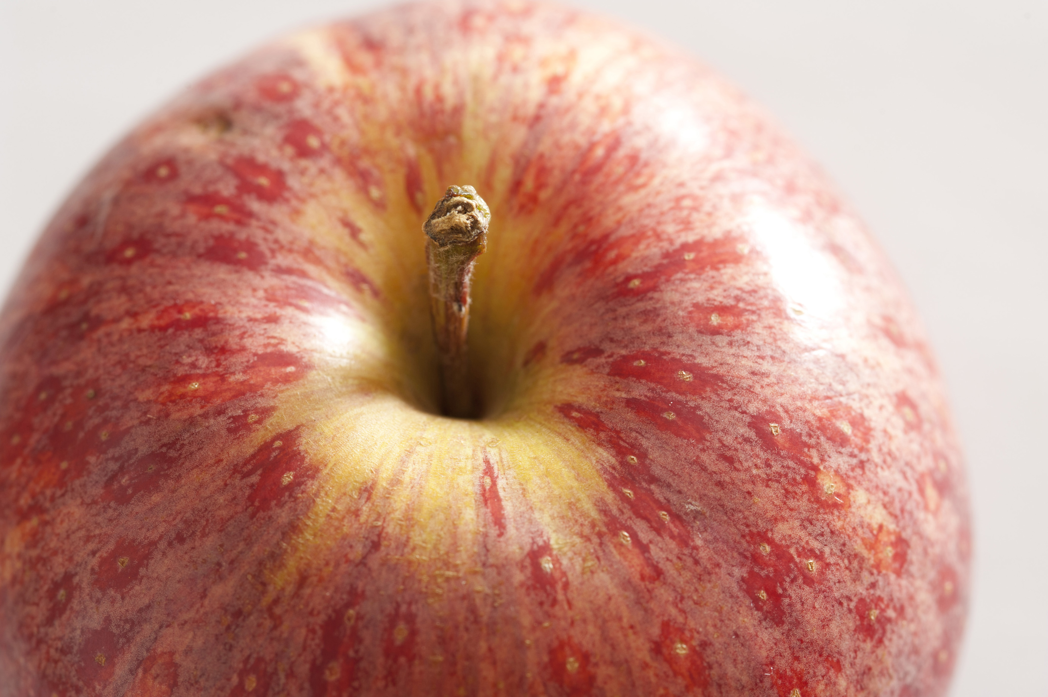 Close-up of fresh red apple. Macro