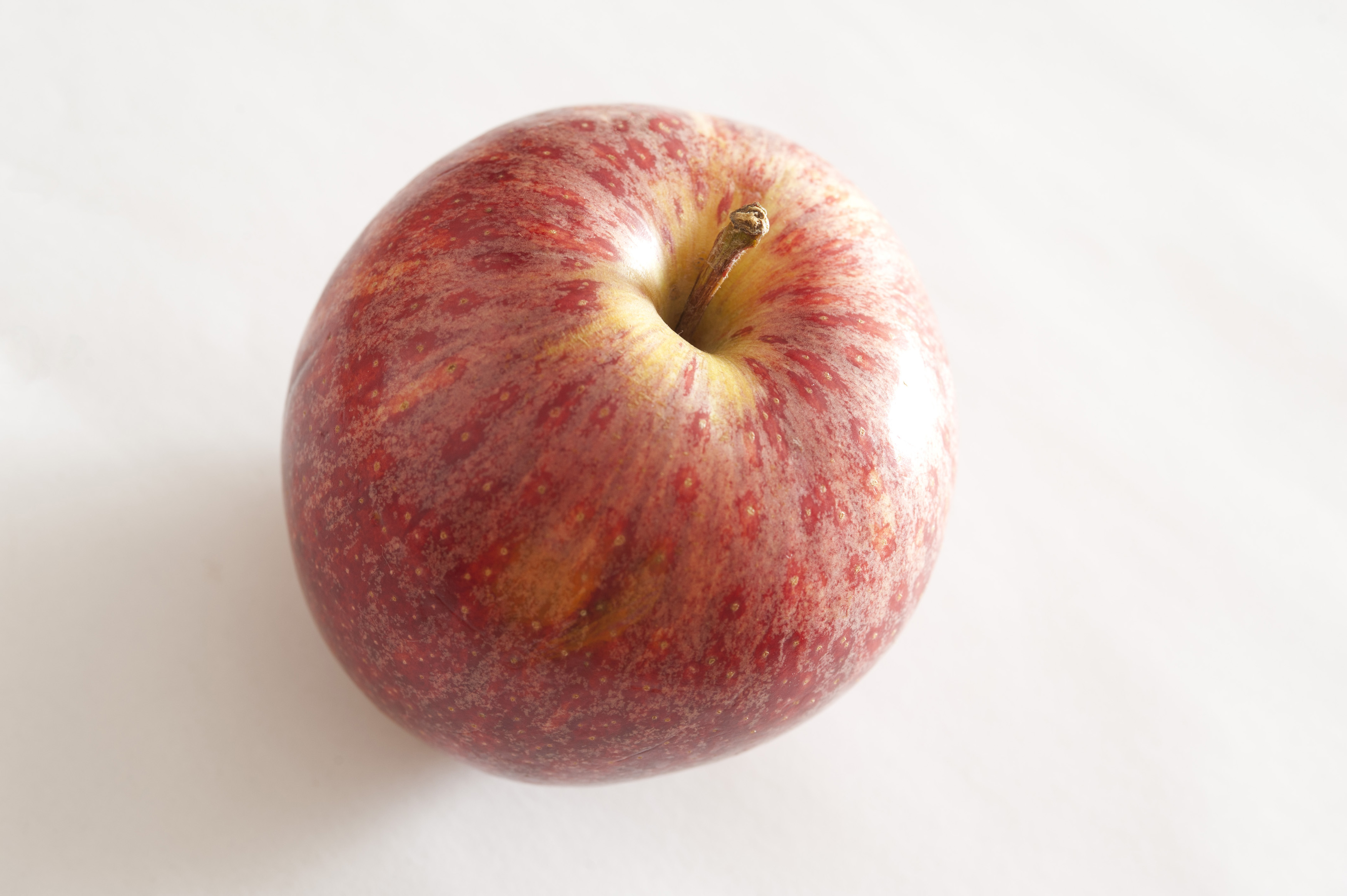 Fresh red apple on a white background viewed from above with focus to the stalk