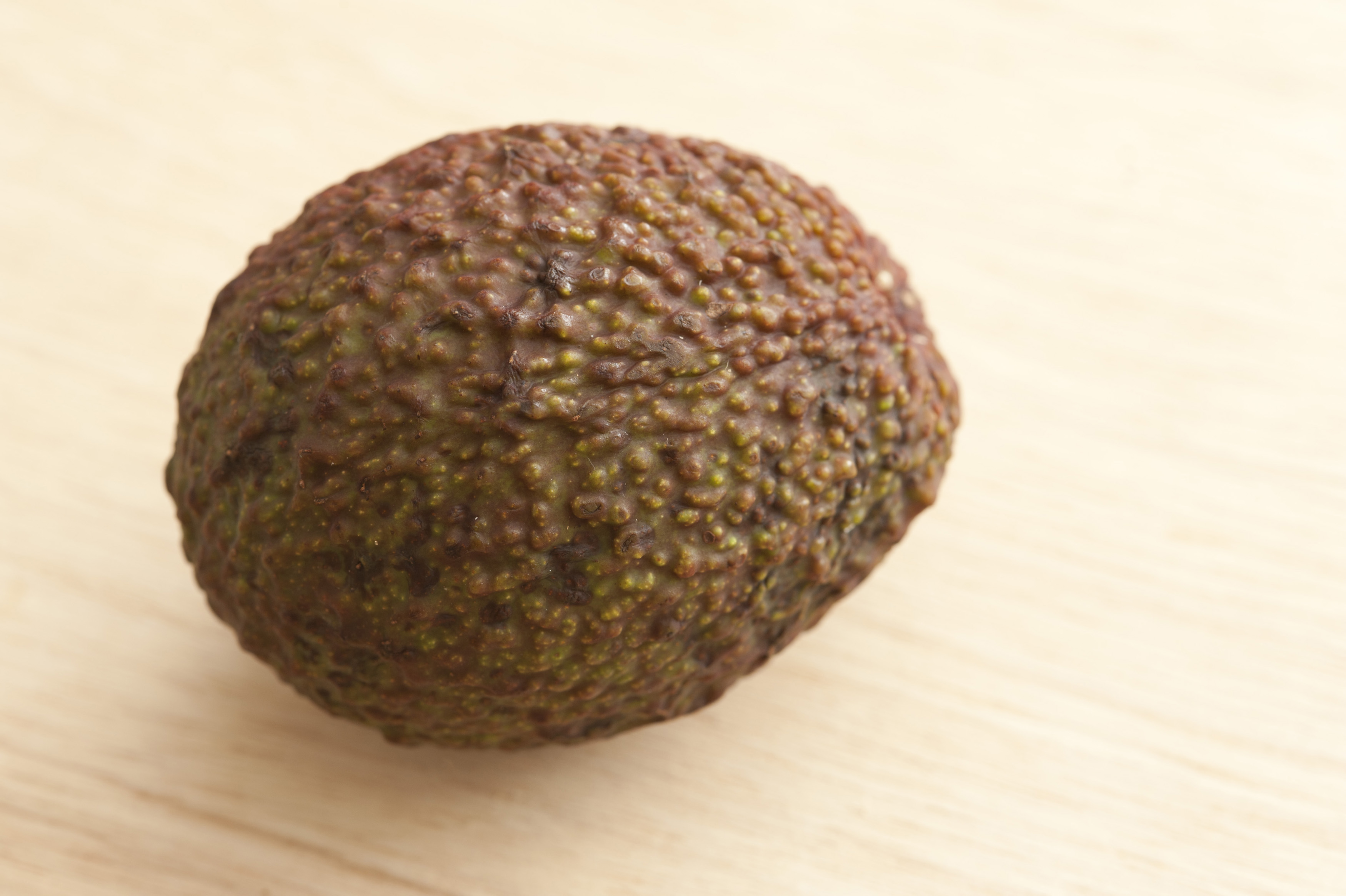 Close Up Still Life of Single Avocado with Textured Skin on Wooden Background with Copy Space