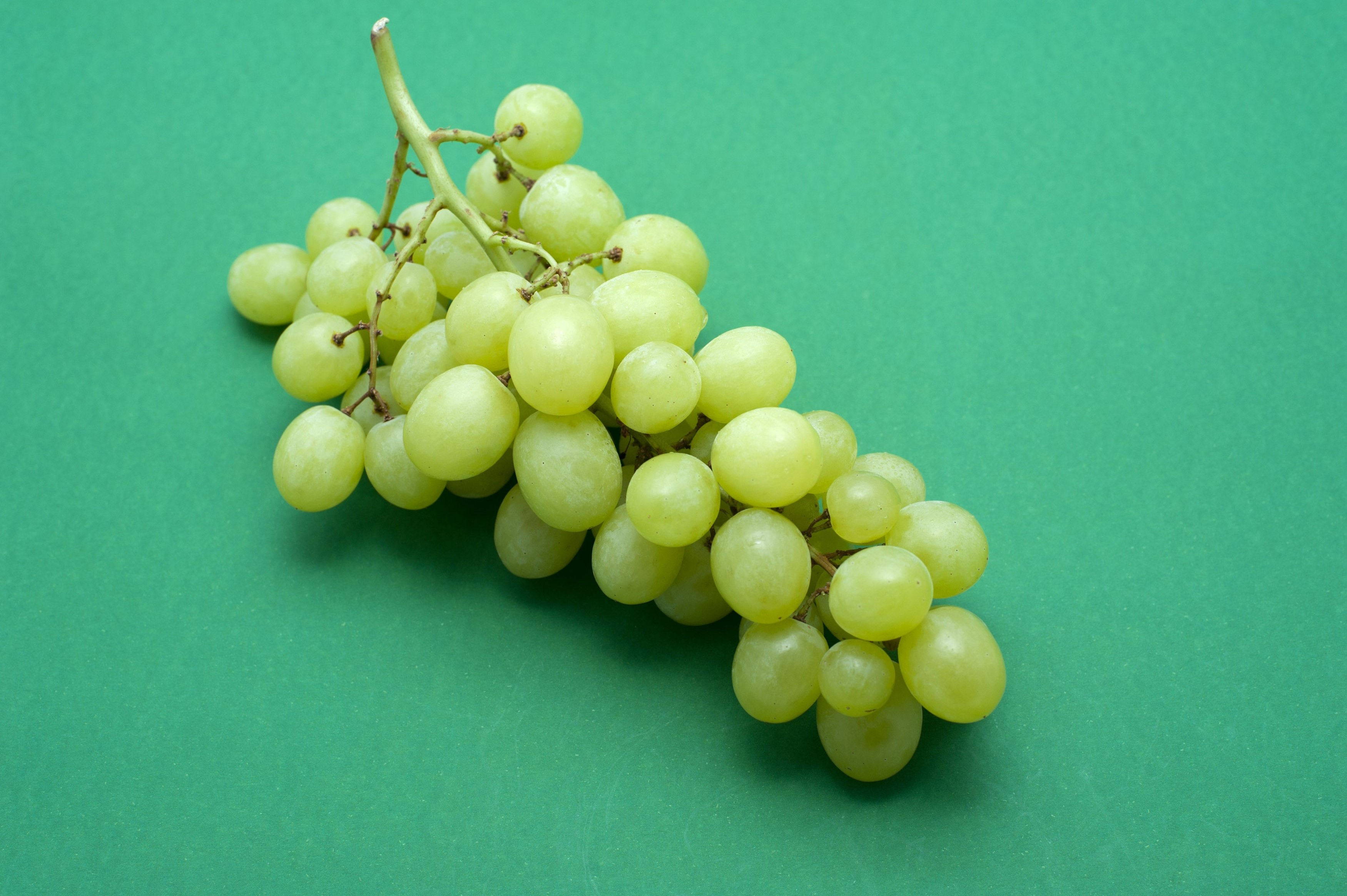 Bunch of fresh green table grapes for a healthy snack or dessert lying on a green background