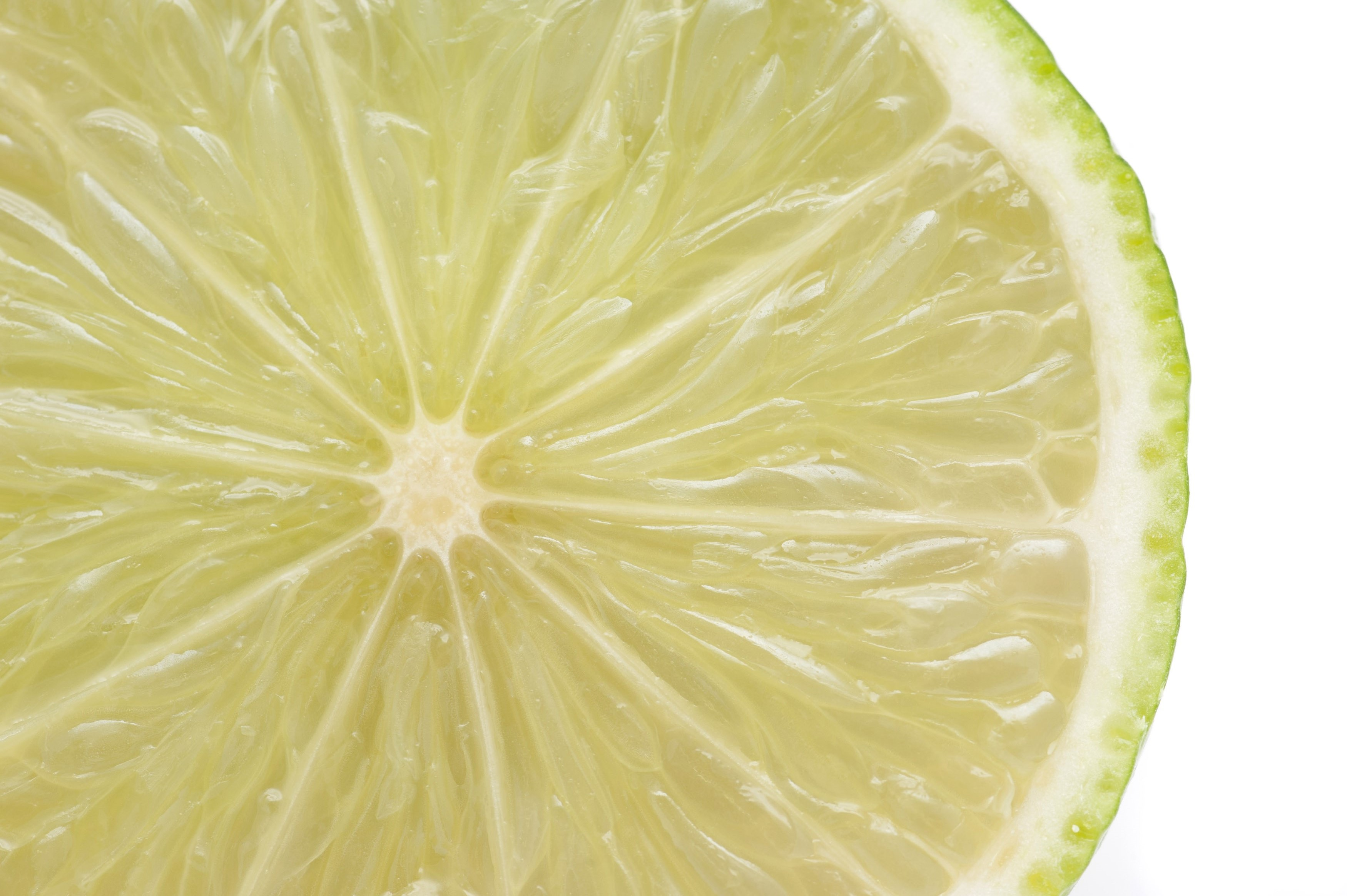Close up texture of fresh sliced lime showing the juicy pulp, segments and thin bitter rind isolated in white
