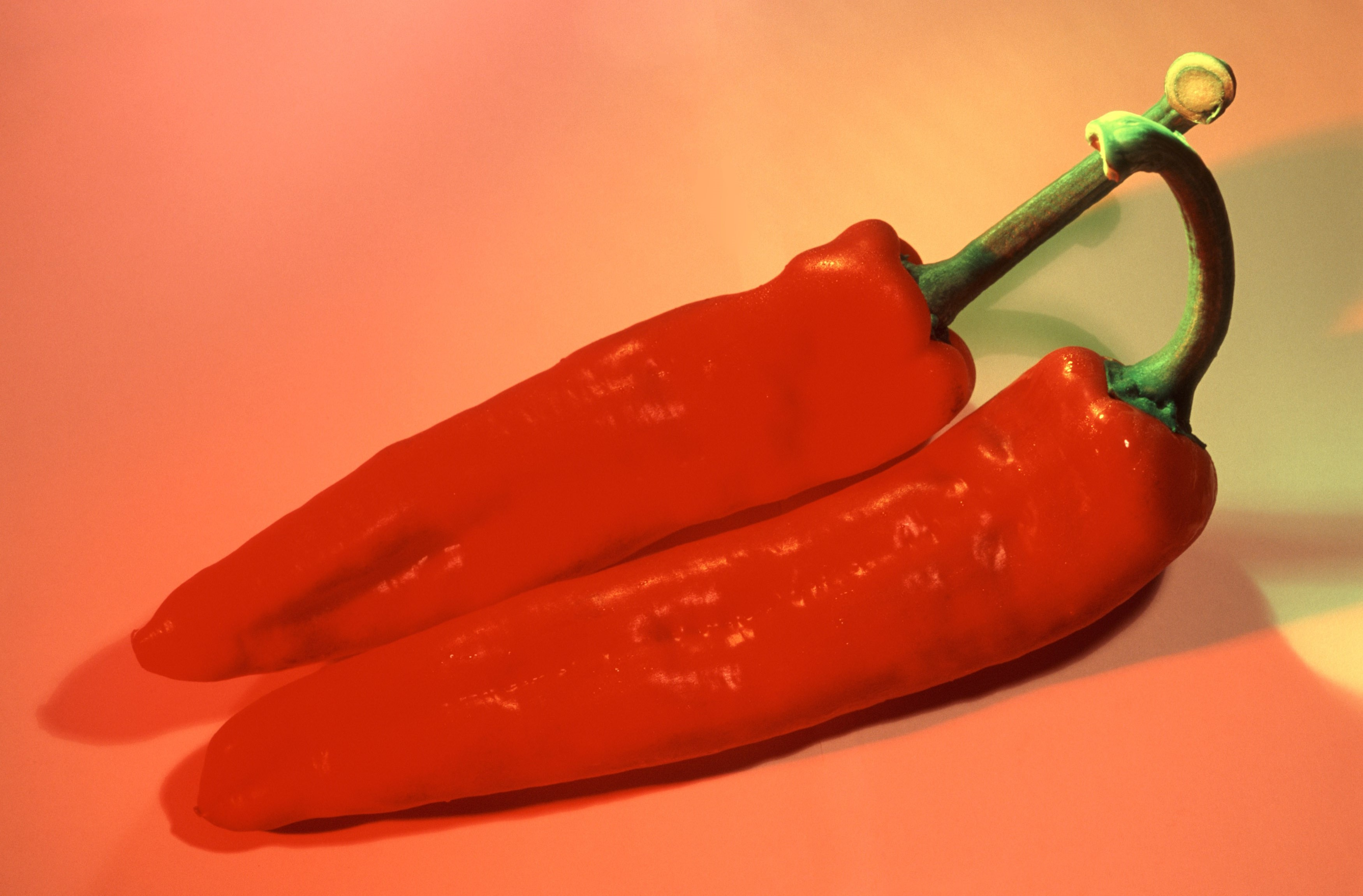 Two whole fresh red hot chili peppers, a pungent spice and flavouring used in cooking and salads