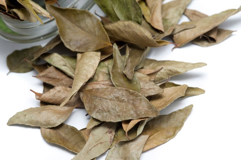 Dried bay leaves free stock image - Cook bay leaves ...