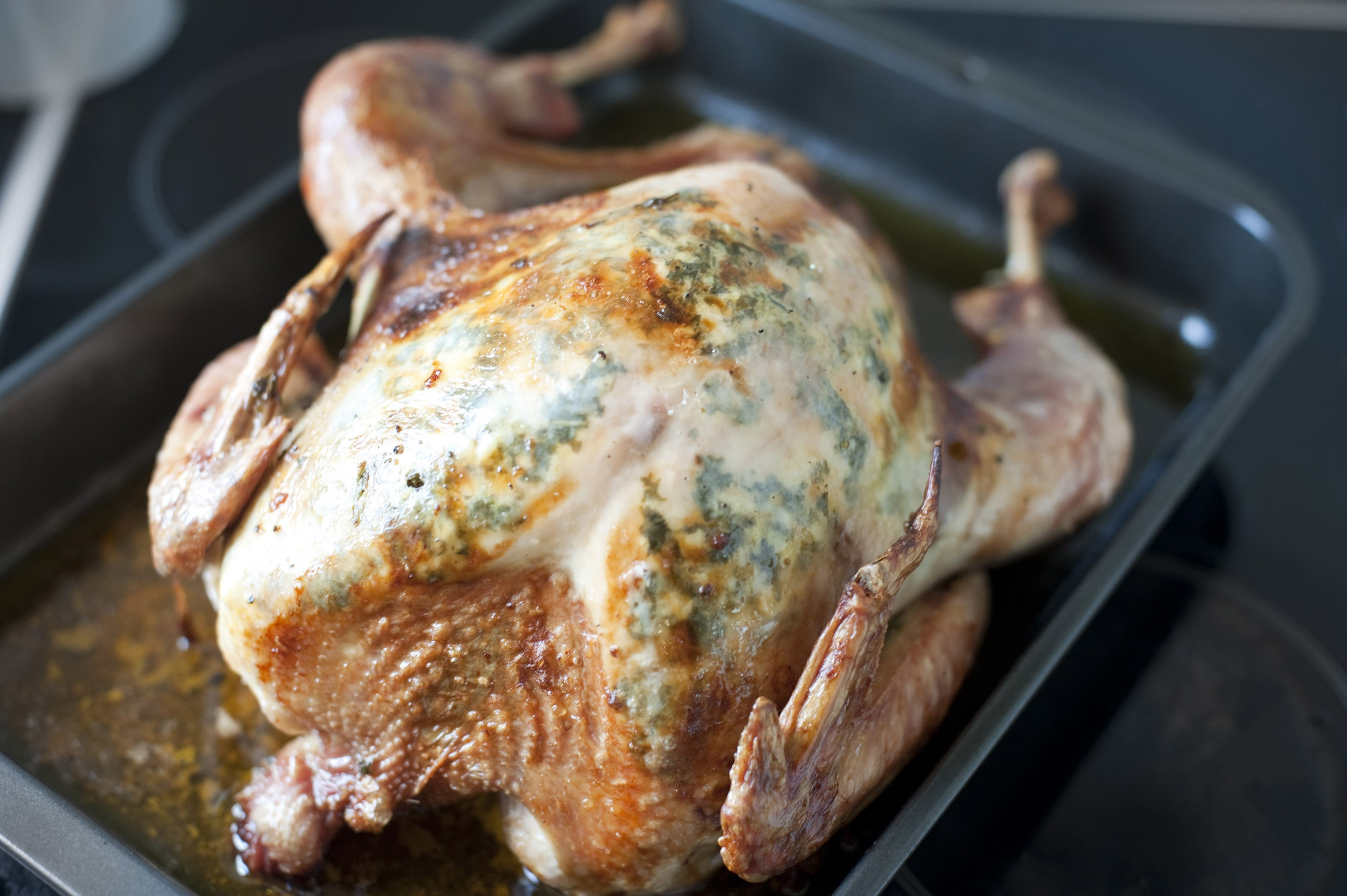 Thanksgiving or Christmas roast turkey in an oven pan during preparation of a festive nutritious meal