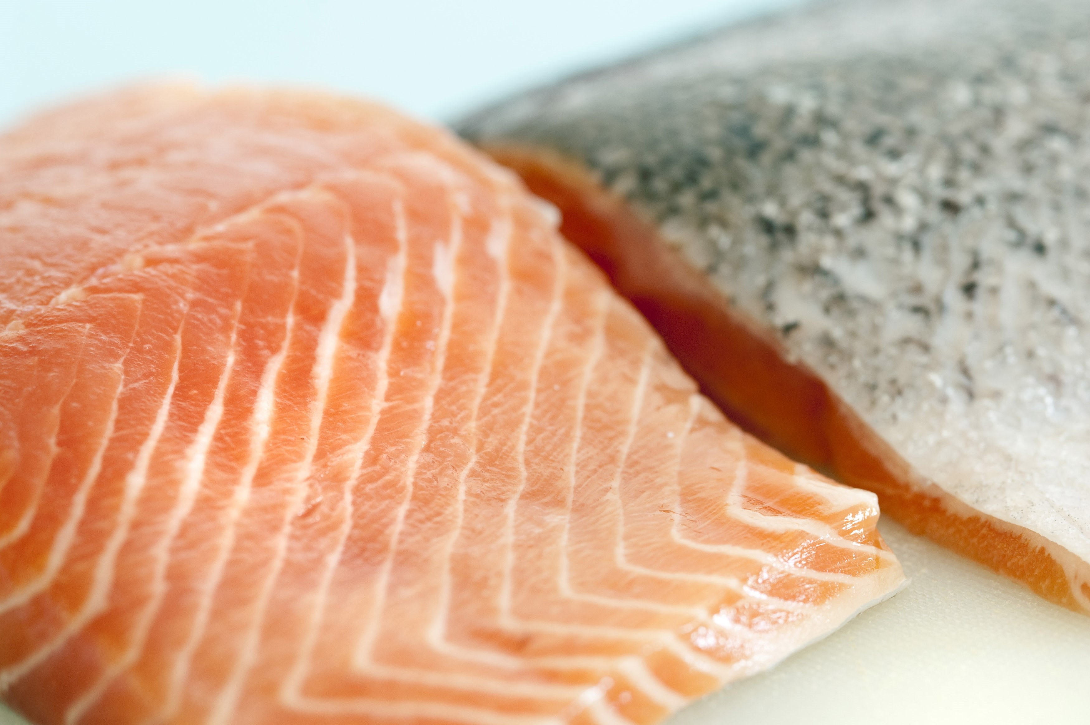 Close up of raw uncooked fresh salmon steaks showing the texture of the flesh of this seafood delicacy