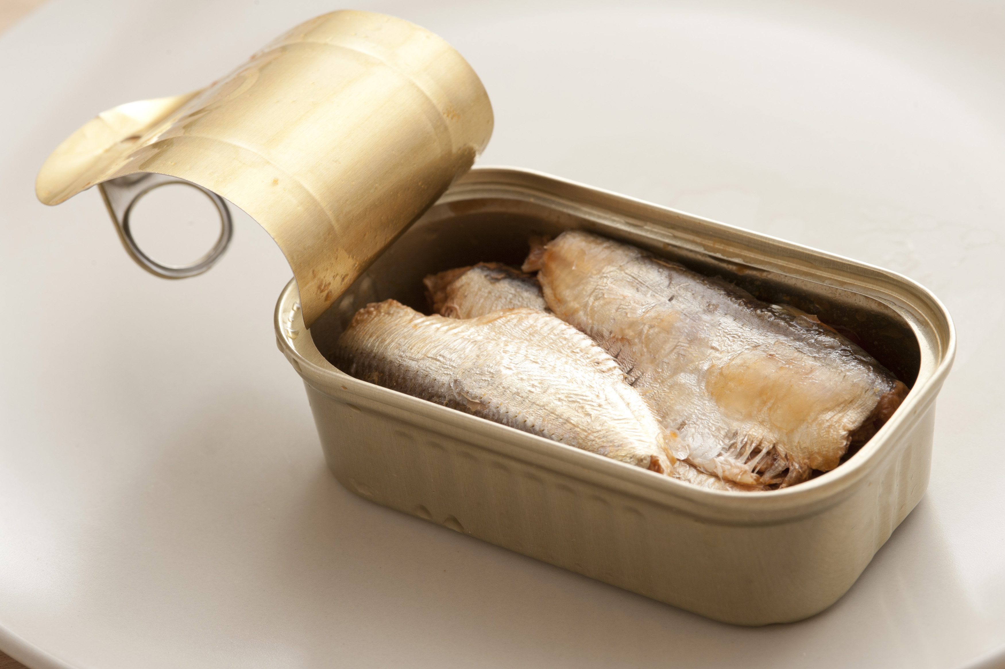 Single open aluminum can of drained sardines ready to eat over white table background