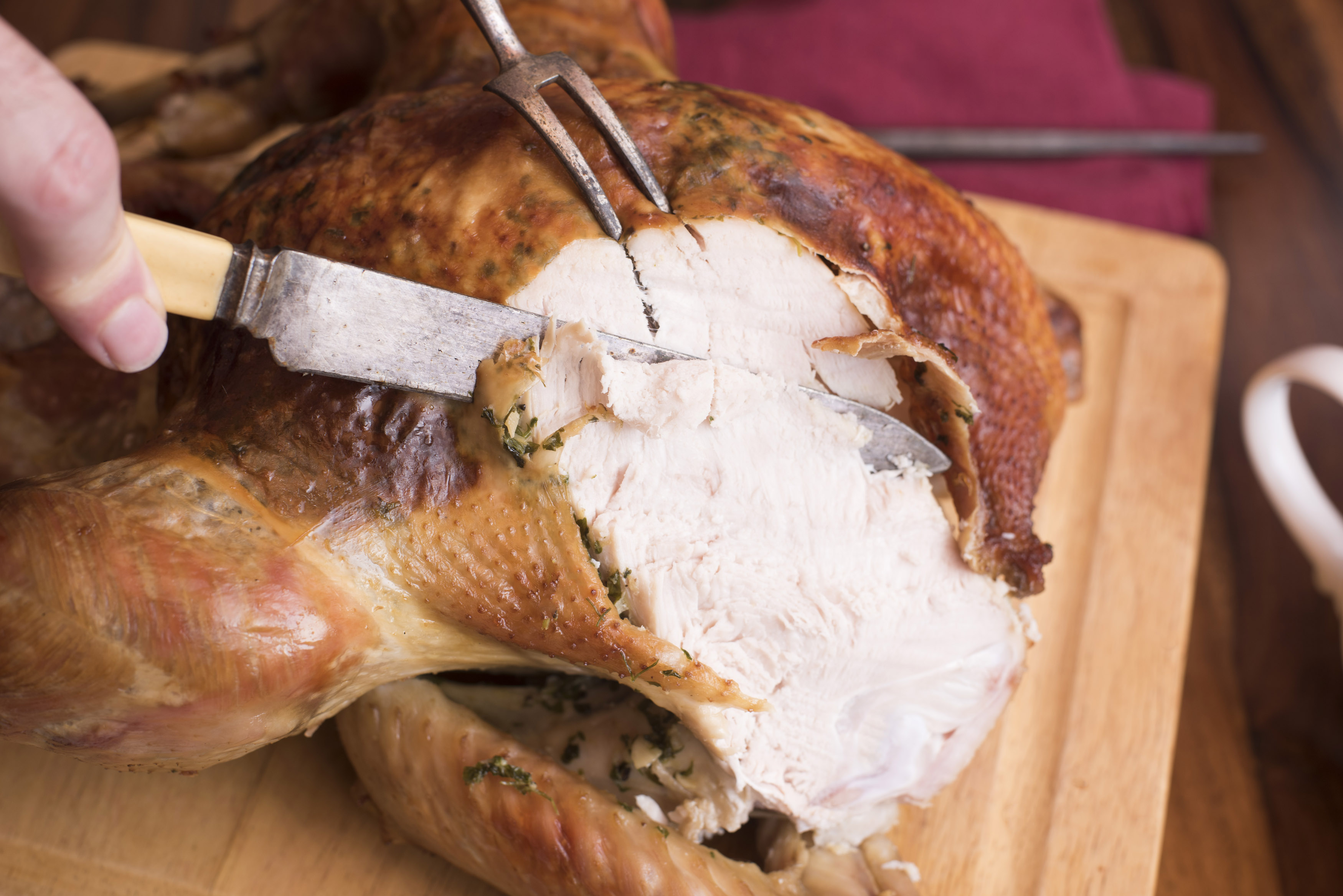 Man carving a roast turkey slicing the breast with old fashioned bone handled utensils in a close up view