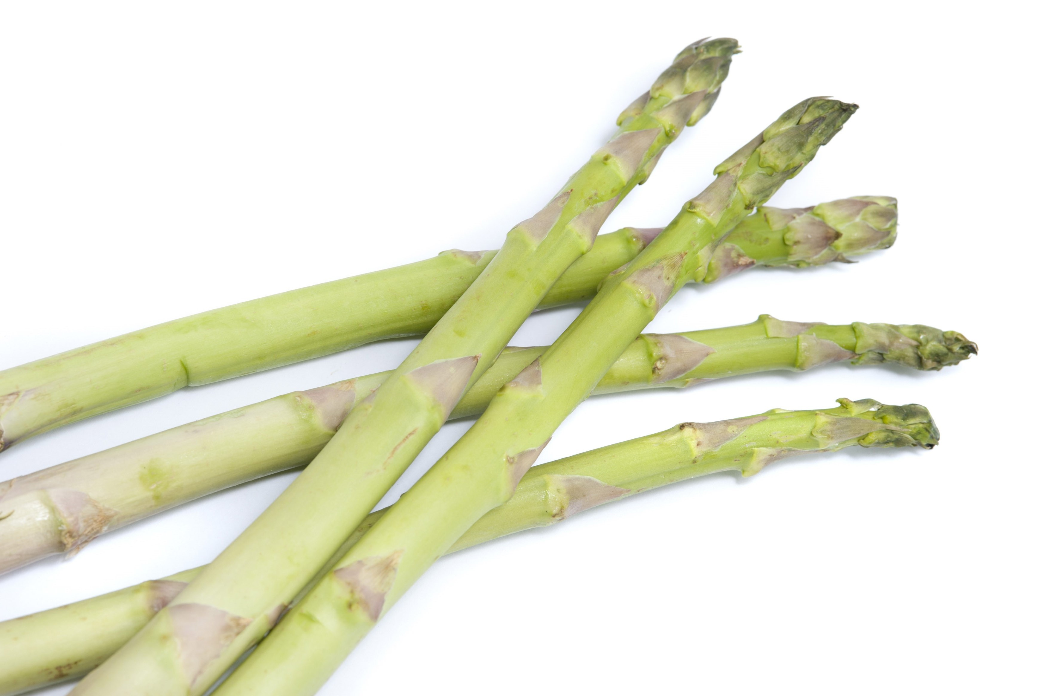 Fresh green asparagus spears or shoots isolated on white, a delicacy ingredient for gourmet cuisine