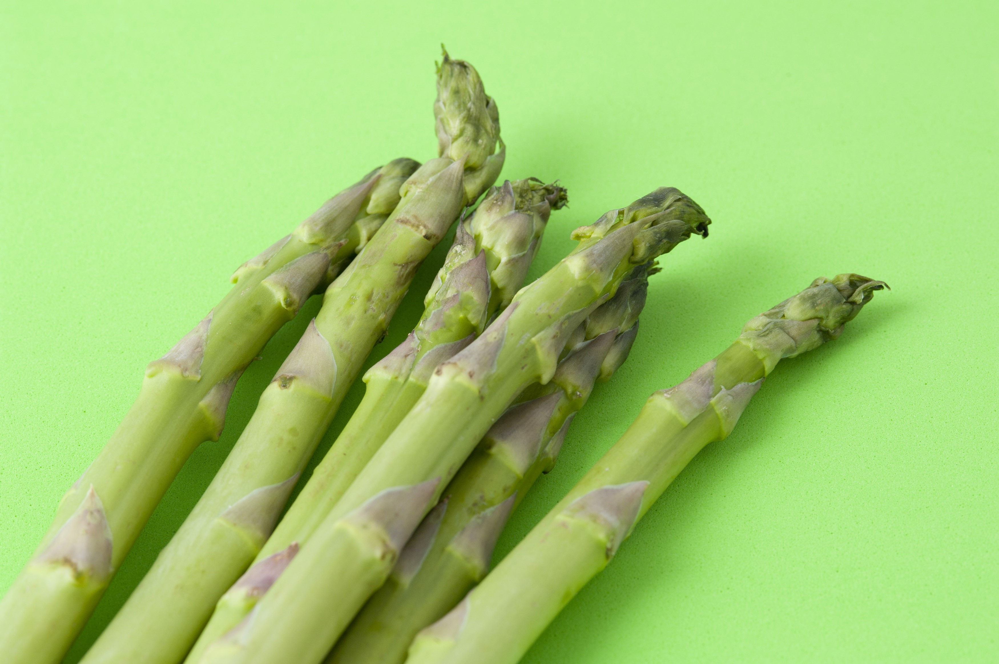 Fresh uncooked green asparagus shoots or spears on a green background