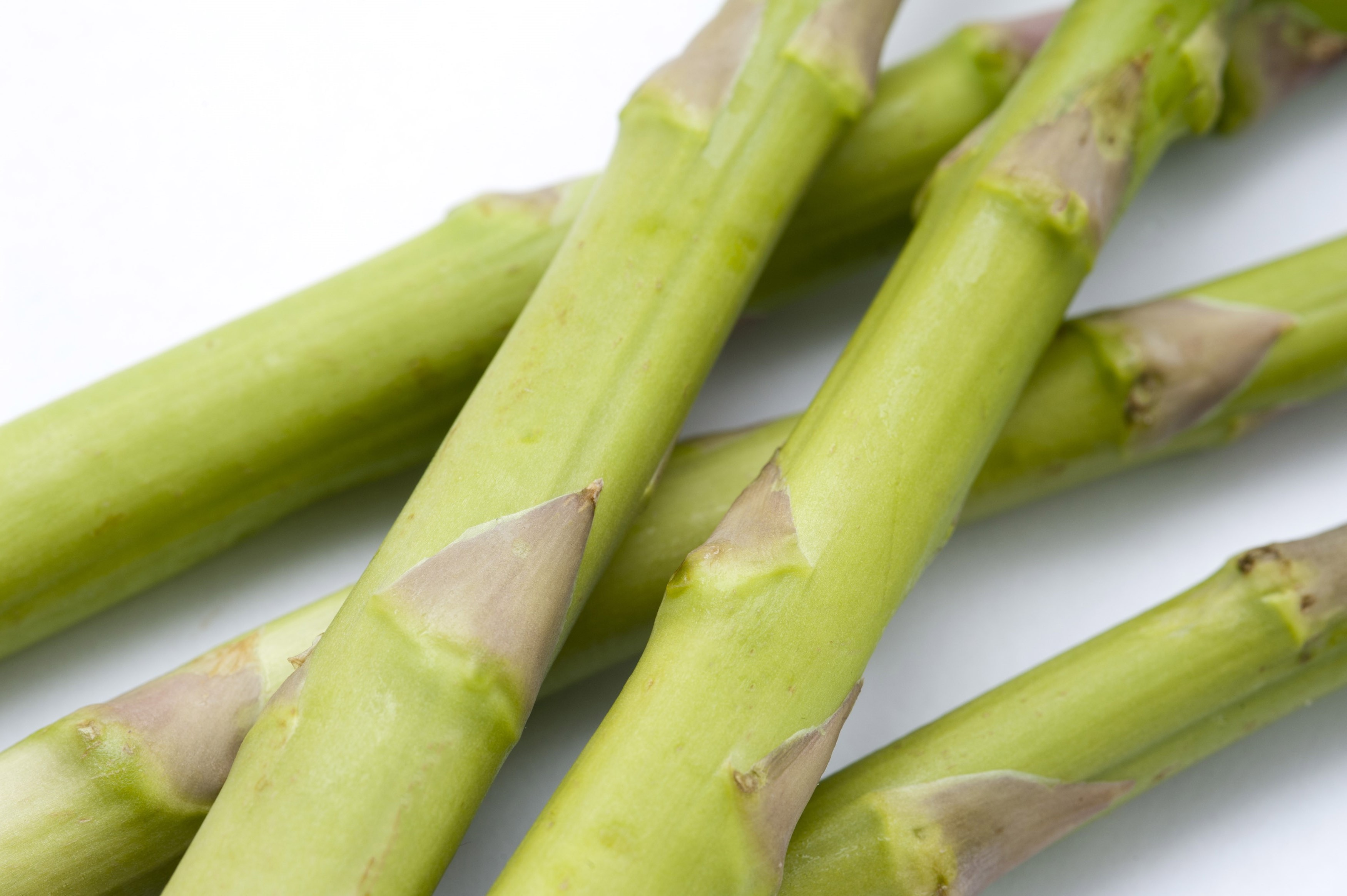 Close up of fresh green asparagus shoots used as an ingredient and vegetable in cookery