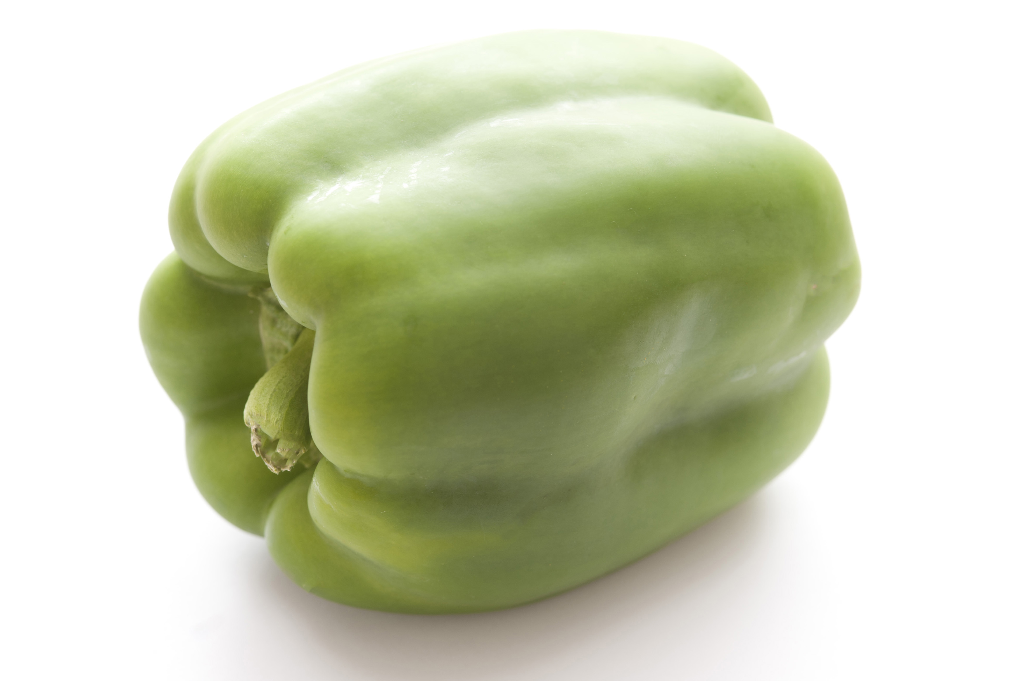 One isolated green pepper on white background