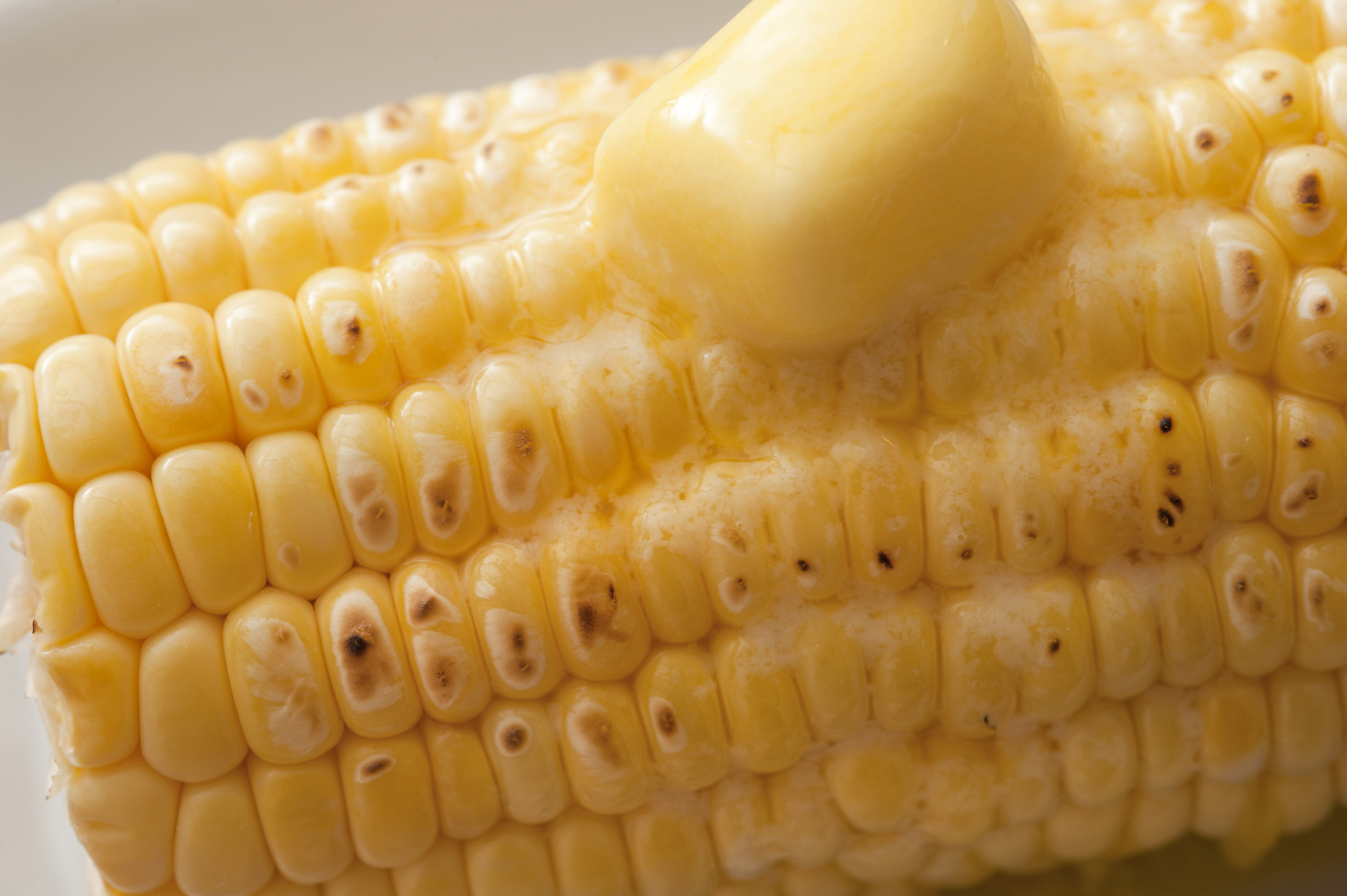Close-up of one raw corn-cob