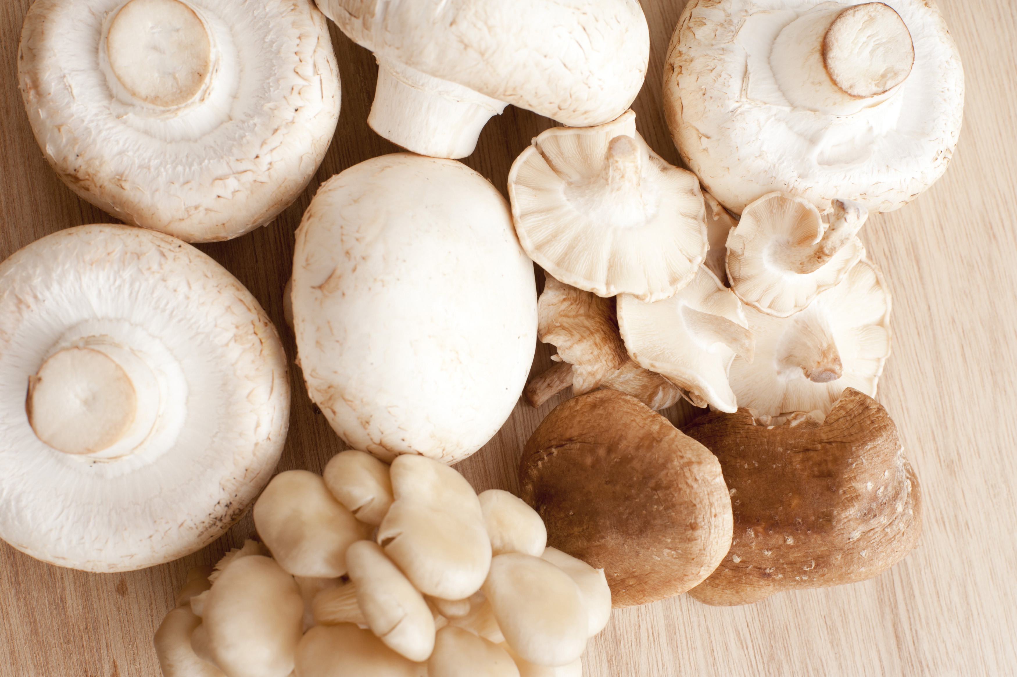 Close-up of different mushrooms on wooden table. From above