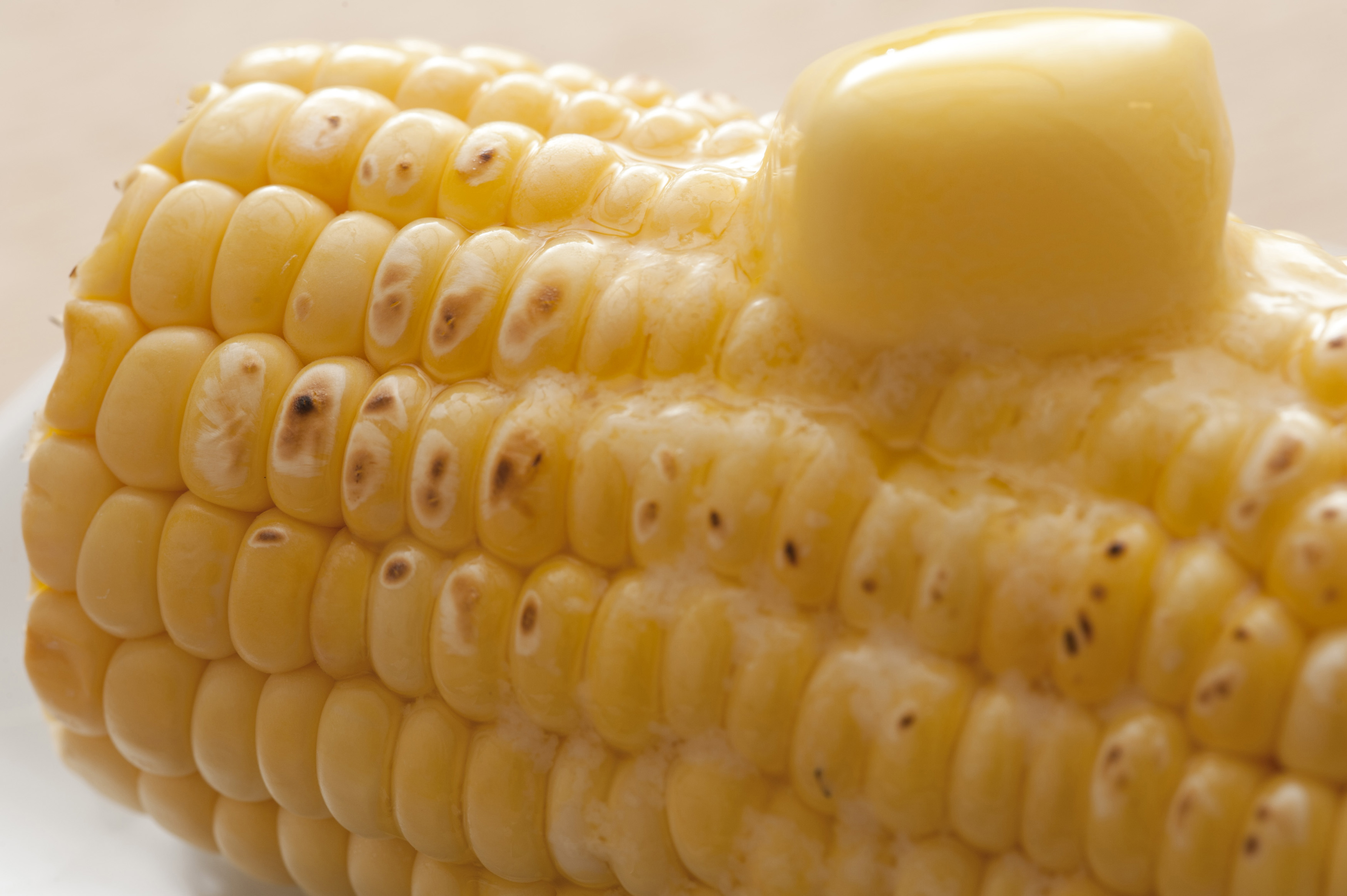 Close-up of cooked corn-cob with butter on top