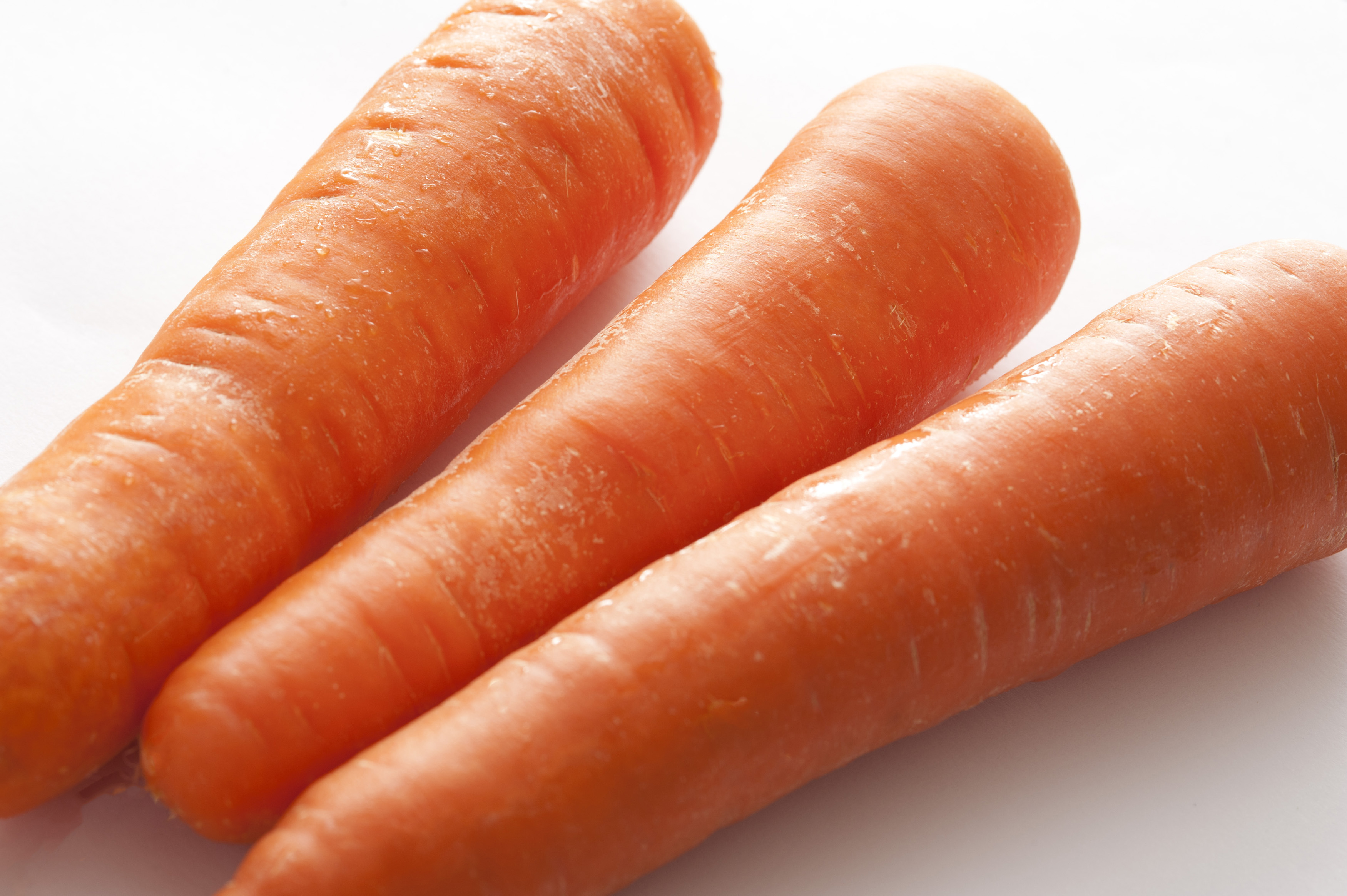 Trio of fresh raw carrots in a close up view for use as a healthy ingredient in salads and cooking, rich in carotene