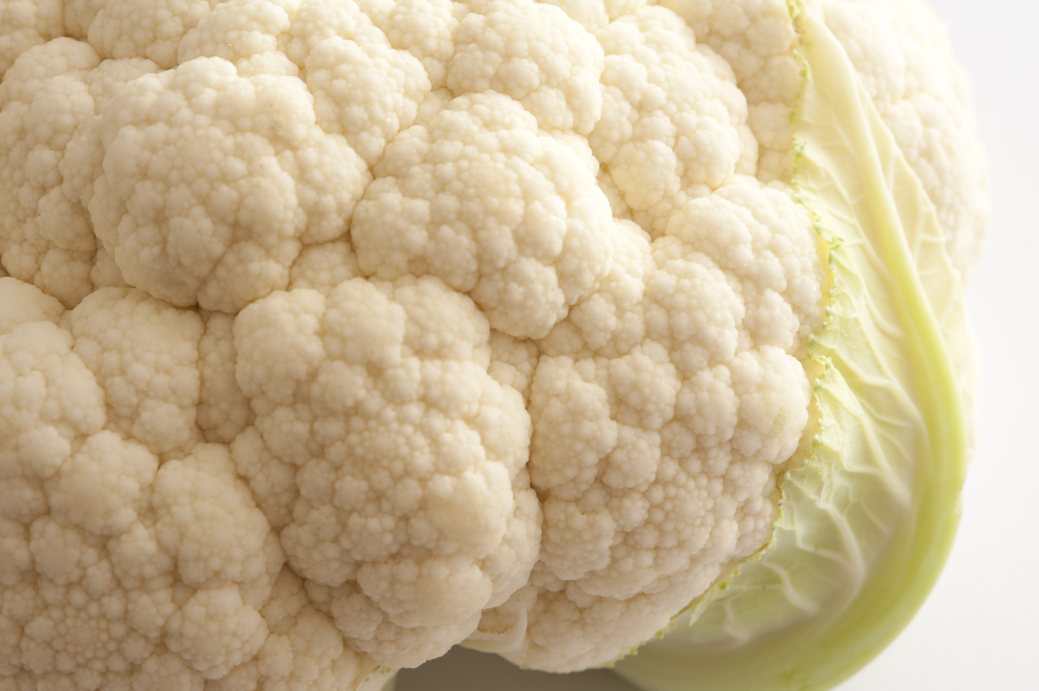 Close up view of the florets and texture of a head of fresh white cauliflower over a white background