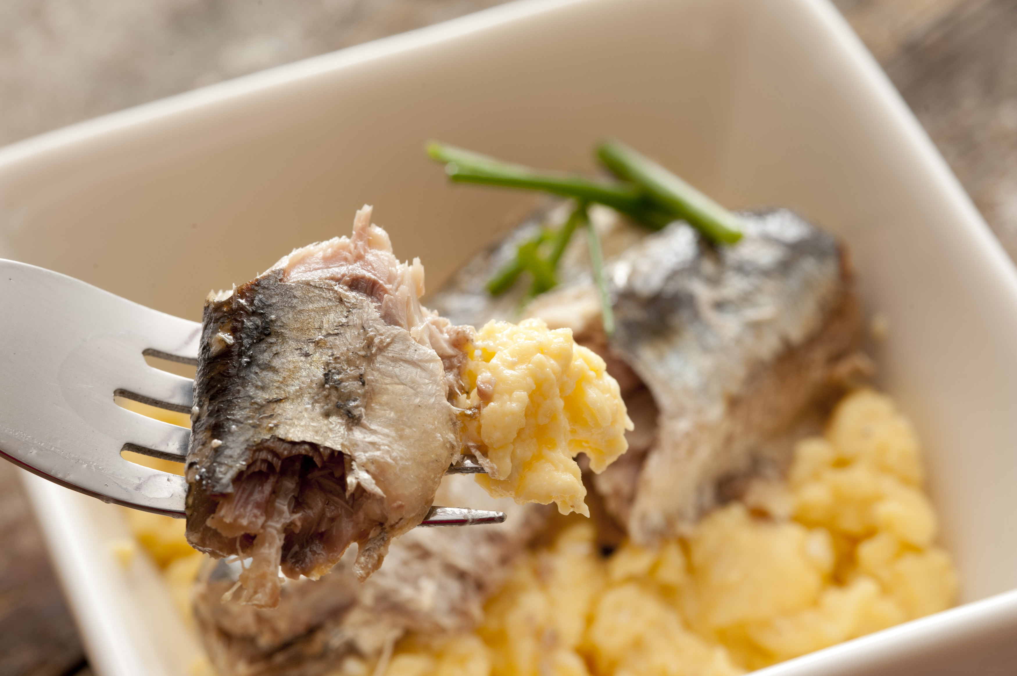 Close up of sardines on fork above delicious scrambled egg breakfast garnished with green garlic chives